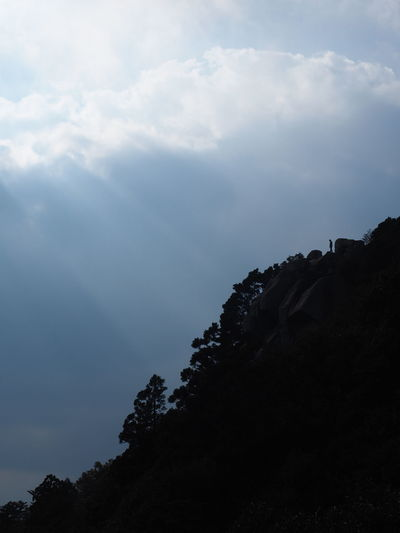 Alone Cliff Cloud Conquer Day Free Freedom High Homanzan Light Lights Mission Complete Mountain Mountains Nature Outdoors Sky Slope Success Top Top Of Mountain Top Of The Mountain Tranquility Tree Yama EyeEmNewHere