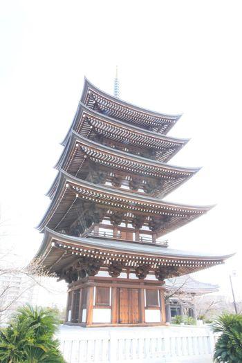 五重塔 Architecture Cultures Built Structure Religion Tradition Celebration Low Angle View No People Outdoors Sky