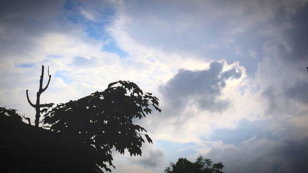CIELFIE Skyfie Sky Ciel Ciel Et Nuages Clouds And Sky Clouds