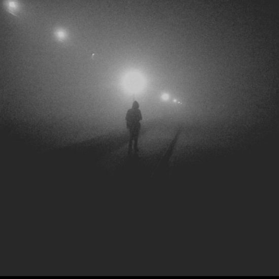 Fog Amity