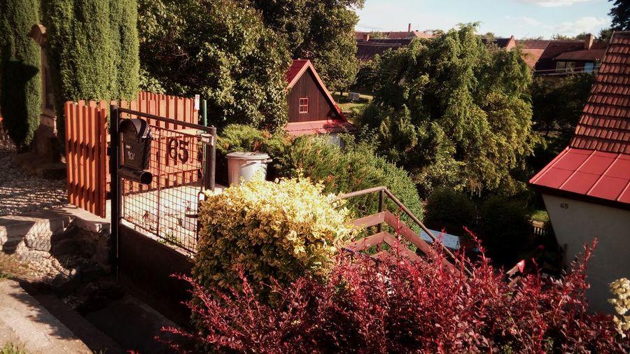 Wellcoming Cattage Village Beutiful  Garden Light Atmosphere Entry Pleasing Look