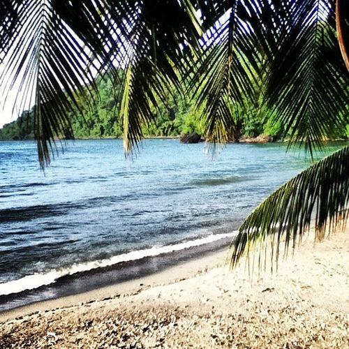 Hellllo island paradise!!!! Grandriviere Toco Trinidad