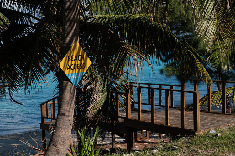 Beach Access Water Tropical Climate Tree Sea Nature Plant Palm Tree Growth No People Beauty In Nature Beach Tranquility Day Tranquil Scene Land Yellow Scenics - Nature Text Outdoors Palm Leaf Signboard