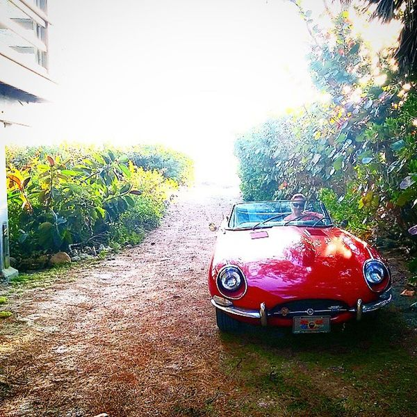 1968 Jaguar XKE Series 1.5 JAGUAR XKE Series1 .5 Srq Sarasota Fla carsofinstagram bestofinstagram Etype siestakey