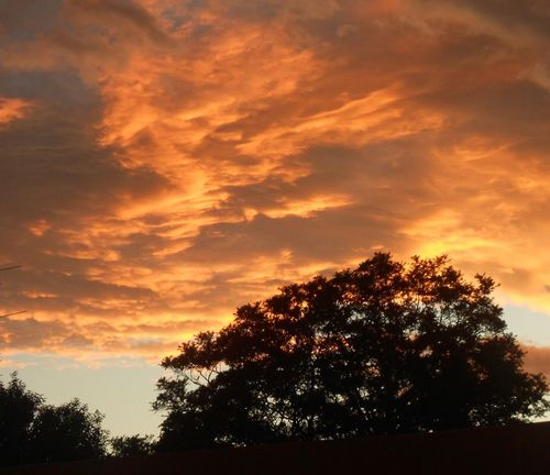 I have an obsession with the clouds💛💛💛 Sunset Suncloud Tree Dramatic Sky Orange Color Dark Sky Nature Cloud - Sky Beauty In Nature Outdoors Scenics Awe Multi Colored Sunlight Day