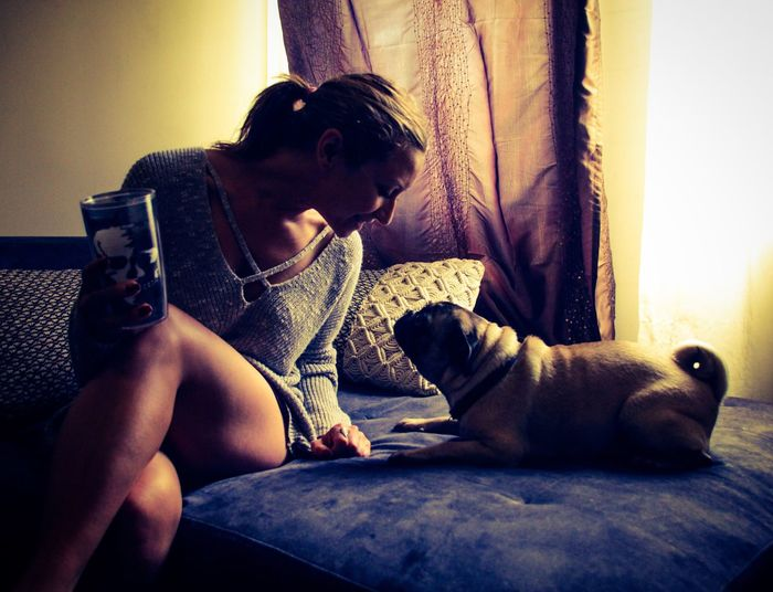 Pets Animal Themes One Animal Domestic Animals Dog Indoors  Mammal Real People Home Interior Young Women One Person Young Adult Casual Clothing Sitting Lifestyles Leisure Activity Relaxation Day People Pug Dog Costa Rica Living Room Indoor Light And Shadow