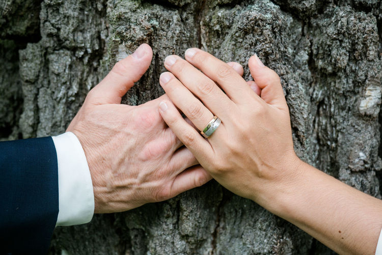 Close-up of couple holding hands by tree trunk