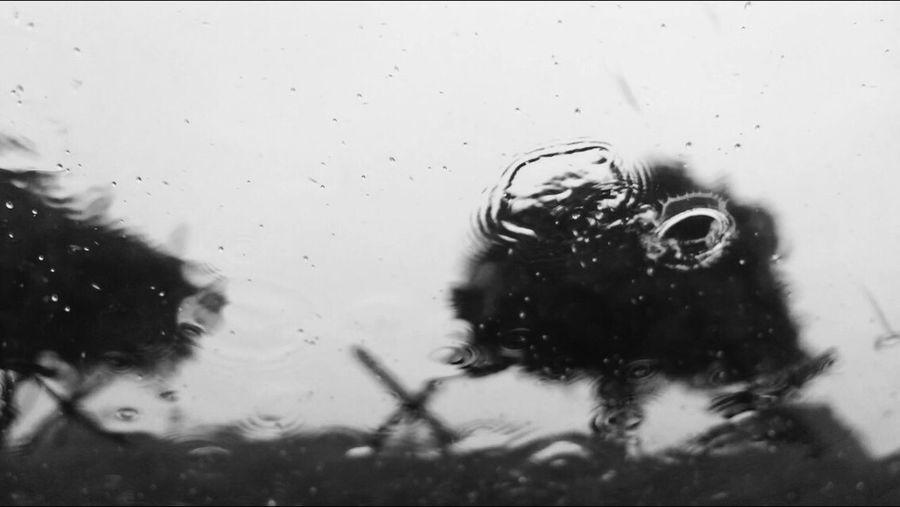 Rainy Days Rain