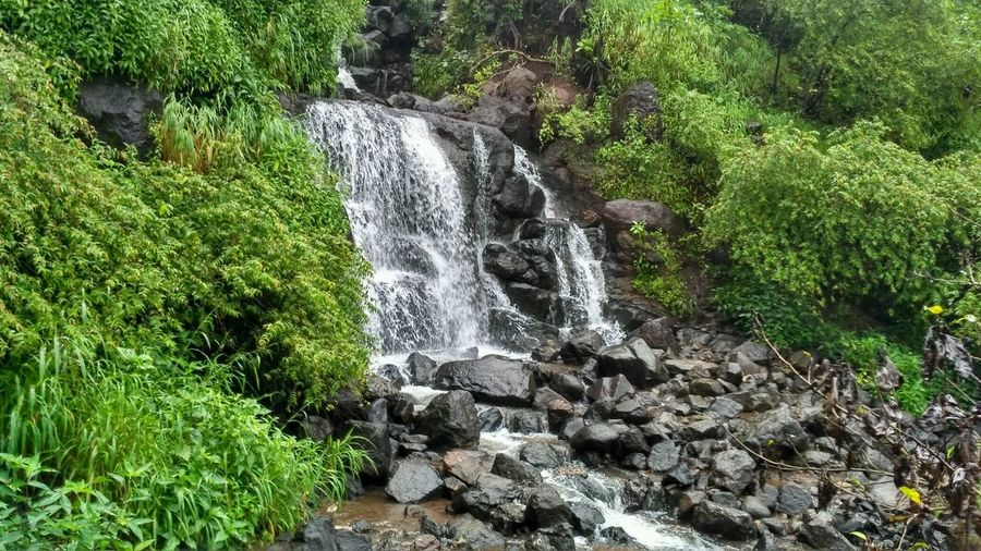 Outdoors Nature No People Green Color Trip Photos Beauty In Nature Tranquil Scene Green Color waterfall #water #landscape nature beautiful Pune Tamhini Ghat