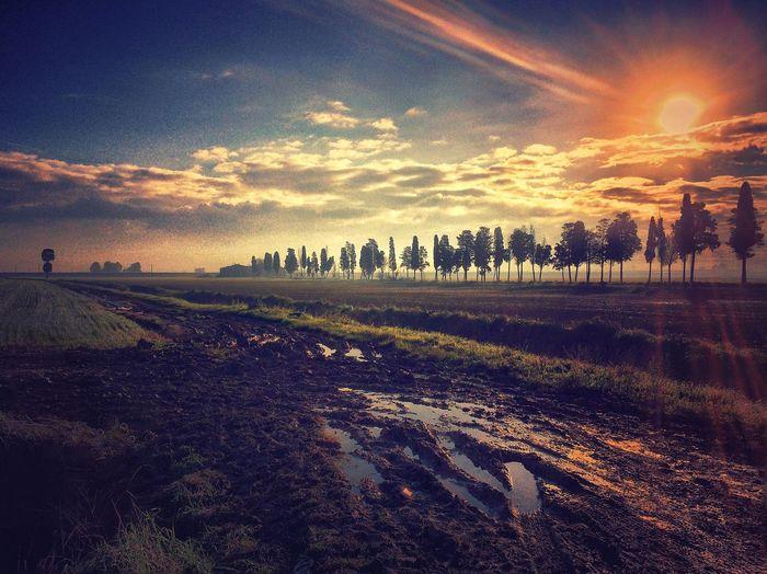 AMPt_community Iphoneonly NEM Submissions EyeEm Best Shots - Landscape NEM Clouds