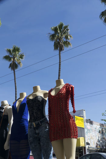 airheads Cable City Clear Sky Day Low Angle View Men Outdoors Palm Tree Real People Rear View Sky Tree Women
