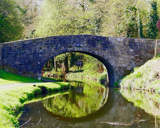 Canal bridge Nature Architecture Bridge Canal Waterway Water Reflections Water_collection Grass Trees Monmouthshire-Brecon Canal Wales