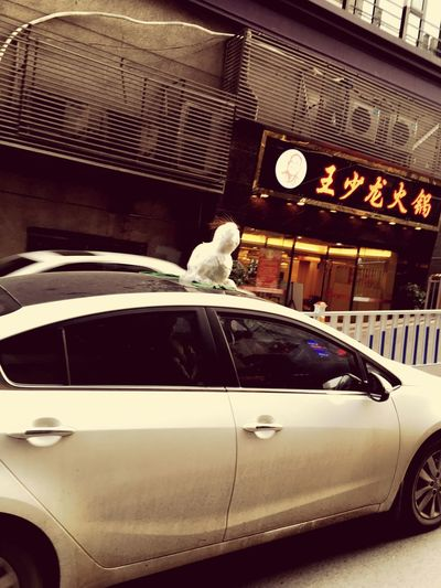 There is a Snowman on a Automobile Car Lol :) , I see this near my school 😂 Discover Your City Taking Pictures Take Photos Southern China Genious People Enjoying Life Make Fun Check This Out Creative Interesting