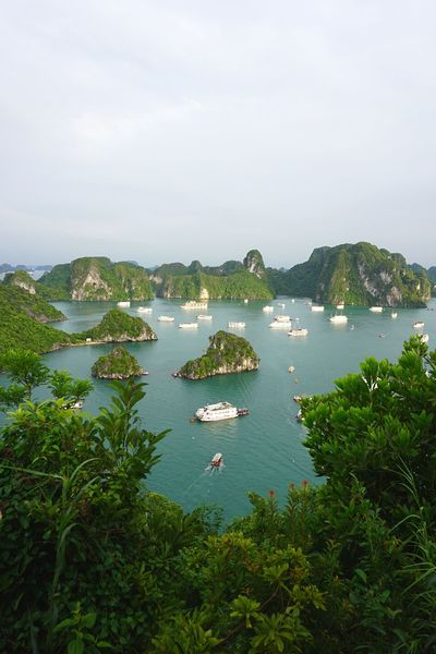 Travel Destinations Look Out View From Above Viewpoint Water Nautical Vessel Scenics Beauty In Nature Outdoors Tranquility Sailing Nature Vietnam Destination Cloudy Halong Bay Vietnam Halongbay Halong Vietnamphotography