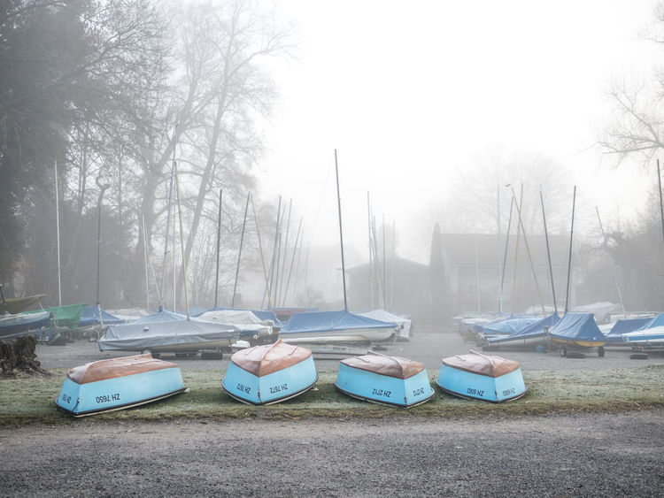 #boat #fog #Lake #reed