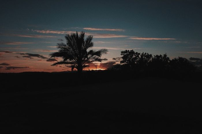 Sky Silhouette Tree Tranquility Sunset Beauty In Nature Tranquil Scene