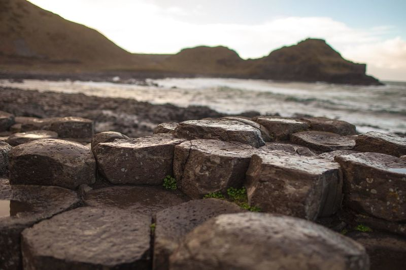 GiantsCauseway Ann Ilagan Photography Beauty In Nature Close-up Day Focus On Foreground Land Mountain Nature No People Outdoors Rock Rock - Object Scenics - Nature Selective Focus Sky Solid Stone Surface Level Tranquil Scene Tranquility Travel Destinations Water