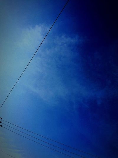 青い空 Tadaa Community Blue Sky Autumn Hello World