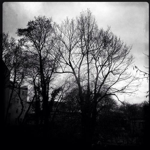 dark days in