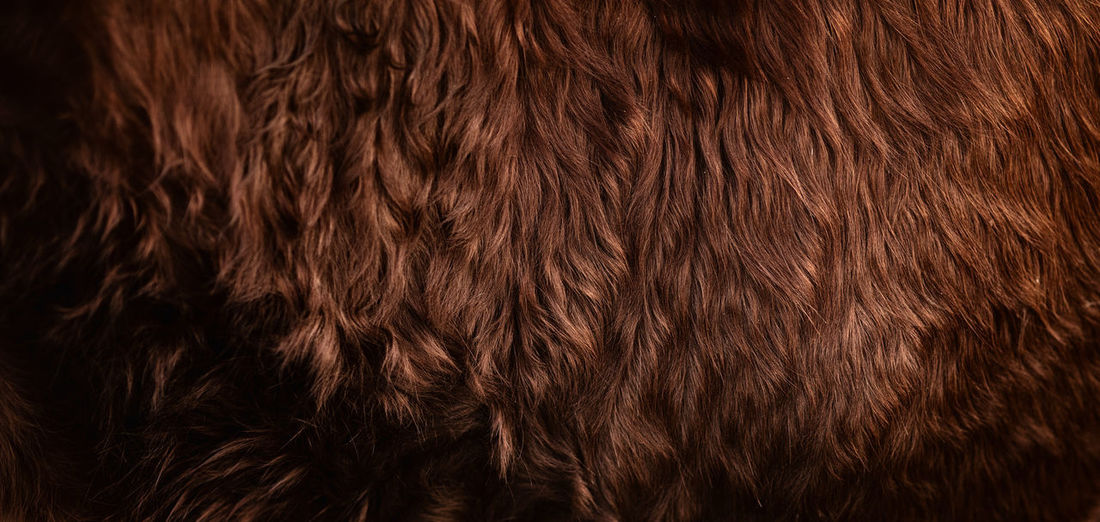 Backgrounds Full Frame Brown Pattern Close-up No People Textured  Hair Abstract Indoors  Animal Hair Brown Hair Wood Smooth Shiny Material Elégance Natural Pattern Wood - Material Wood Grain Softness Hairstyle Textured Effect Wavy Hair