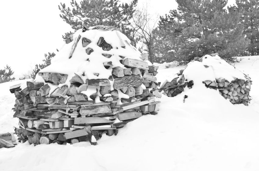 Black & White Black And White Cold Cold Temperature Frozen Harsova Nature Outdoors Romania Season  Snow Weather White White Color Winter Wood - Material Woods