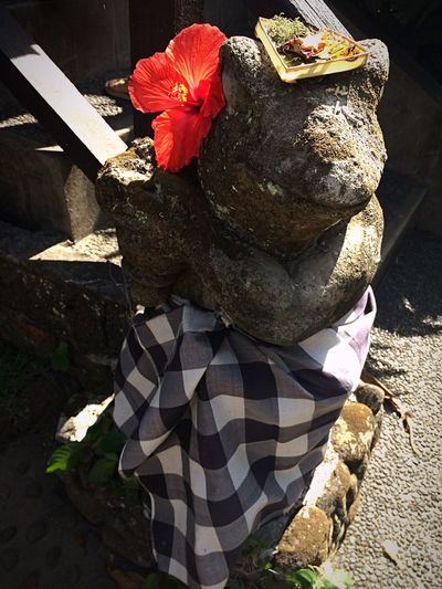 Statue Gift Gods Offering Offering To God Statue In The City Frog Dress Flowers Flower Red Flower Ibiscus Decoration Decor Thanksful Check This Out Hello World Relaxing Taking Photos Enjoying Life Enjoying Enjoy The Little Things Enjoy The Time Ubud Ubud, Bali