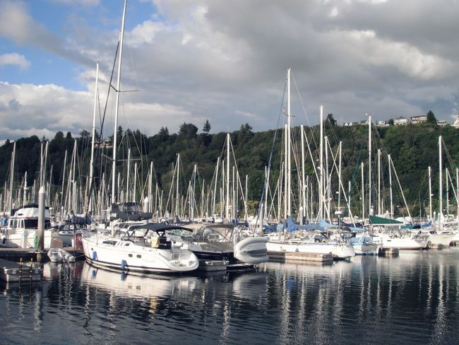 Marina light and water Liesure Time Liesure Sports Yachtclub Summer Pacificnorthwest Calmness Water Nautical Vessel Cloud - Sky Transportation Sky Mode Of Transportation Moored Sailboat Reflection Outdoors Mast Harbor Waterfront No People Day Yacht Marina