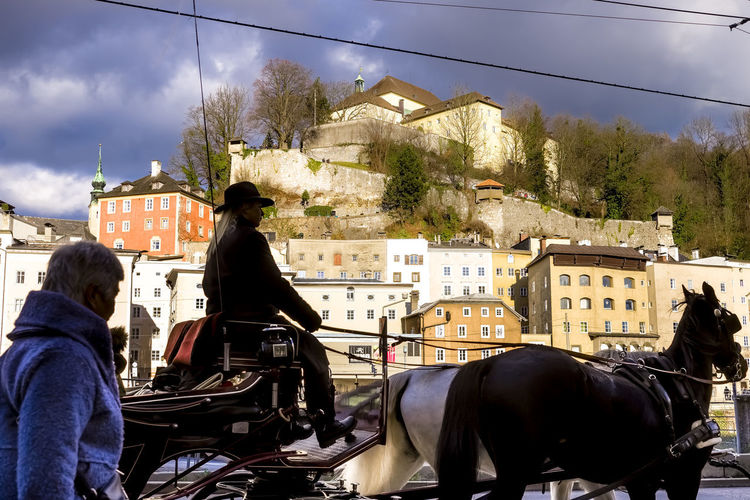 People riding horse in city