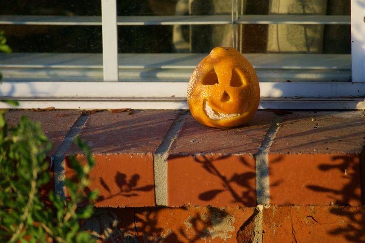 Close-up of pumpkin on metal window