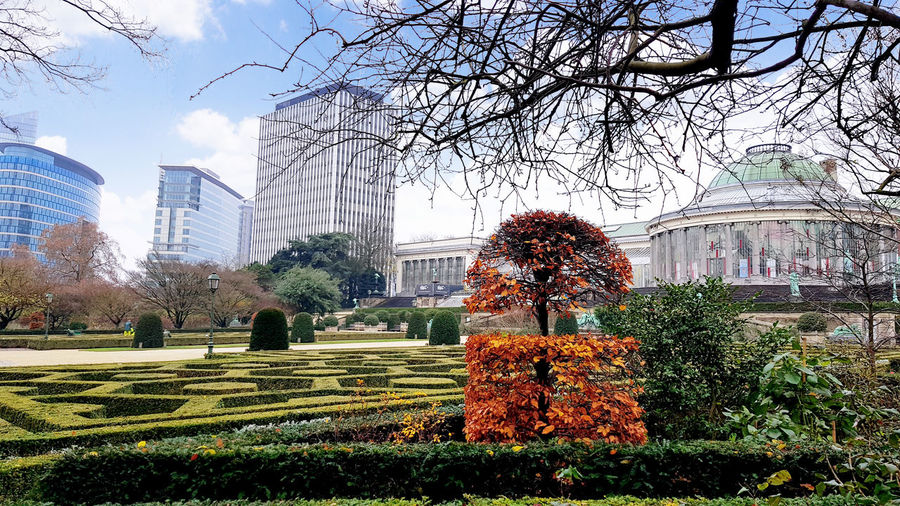 View of park with city in background
