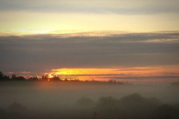 Foggy sunrise today