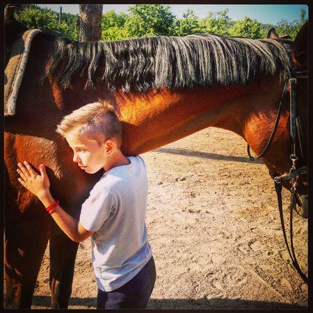 Nature Childhood Horselove Just Chillin' PureJoy Purepunk Punkrock EyeEmNewHere