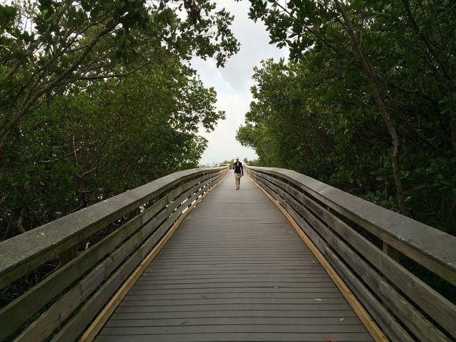 Boardwalk Lovers Key, Florida by iPhone Boardwalk Fort Myers Beach The Photojournalist - 2016 EyeEm Awards