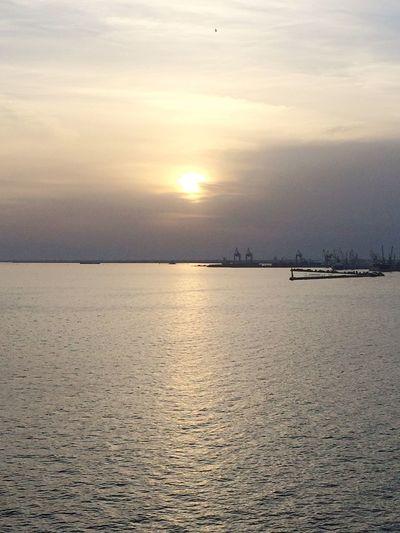 🌅 Sunset