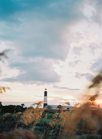 peering through the grass you see a lighthouse standing tall with a beautiful sunset setting right behind it. Film, Georgia Grass Growth Tybee Island GA Architecture Building Exterior Built Structure Cloud - Sky Day Lighthouse Nature No People Outdoors Sky Sunset Tower