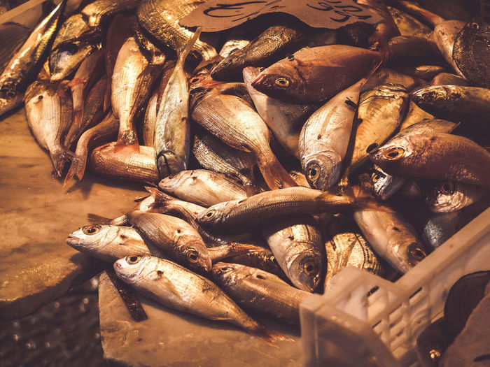 I ate them all Food And Drink Food Freshness Seafood Wellbeing Healthy Eating Fish Still Life Abundance Close-up Vertebrate Large Group Of Objects Animal No People High Angle View For Sale Day Raw Food Retail  Market Sardines Food And Drink Seafood