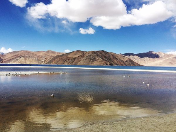 Pangong Lake Lake Mountain Nature Landscape Lakeside Lake View Lakeshore Lakes  Lake Pangong Leh Blue Lake Blue Water Blue Wave Lake Life Lakescape Lake Shore Lakefront Lakesideview The Great Outdoors - 2017 EyeEm Awards No People Nature On Your Doorstep Nature_collection Nature Photography Beauty In Nature Live For The Story