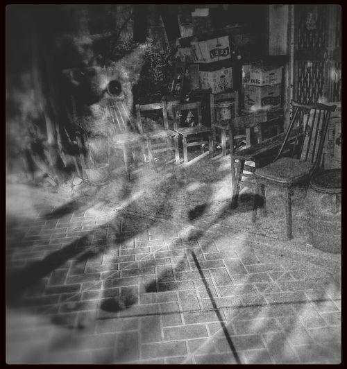 天就快亮了。 從心裡搬出心愛的貓咪 幾張自由座的位子 他的她的雜物幾箱 黑白色的電影 。空空了。可以裝全新的夢了。 Light And Shadow AMPt Black And White Deams