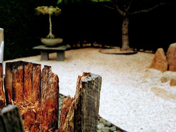 Old Ruin Nature Zen Garden EyeEmNewHere GALAXY S4