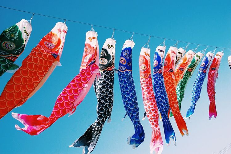 Low angle view of multi colored koinobori hanging against clear blue sky