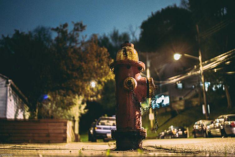 Close-up of statue against illuminated park at night