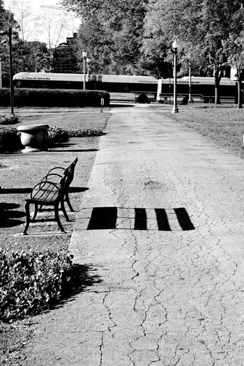 Outdoors No People The Street Photographer - 2017 EyeEm Awards Chicago City Blackandwhite Bench Park Tranquility Neighborhood Map Breathing Space