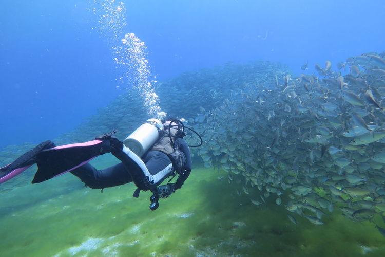 Full Length Of Man Diving Against