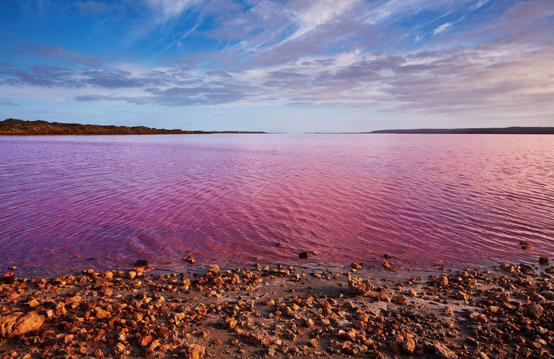 Western Australia Australia Sky Water Scenics - Nature Beauty In Nature Tranquil Scene Tranquility Cloud - Sky Nature Sea Beach No People Horizon Land Idyllic Non-urban Scene Horizon Over Water Day Sunset Outdoors Pink Lake