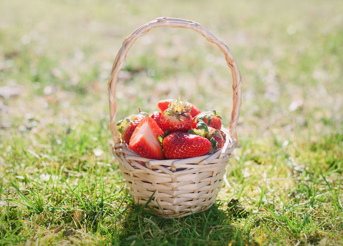 Close-up of strawberries in basket on field