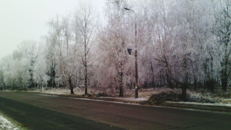 Winter I,m Photograf Snow