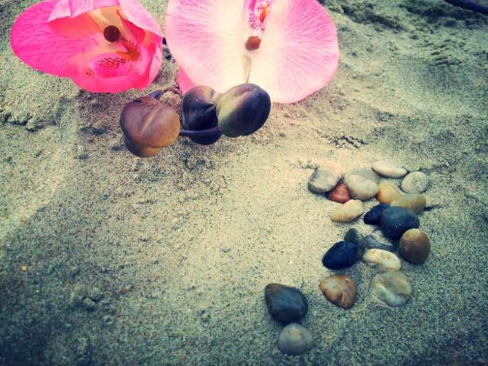 Beach Flower Power Stones Just Something :)
