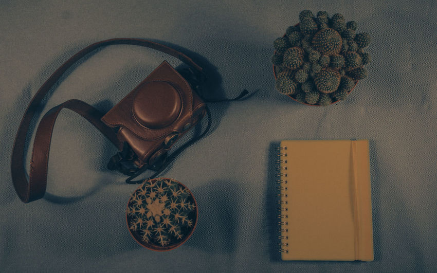 Indoors  Table High Angle View Directly Above Book No People Close-up Day Fat Plants Taste Of Travel Work Notebook Paper Text Space Ready To Go Full Frame Blue Background Vintage Style Desk Desks From Above Plant Cactus Leather Bag Camera Bag Camera - Photographic Equipment Studio Shot