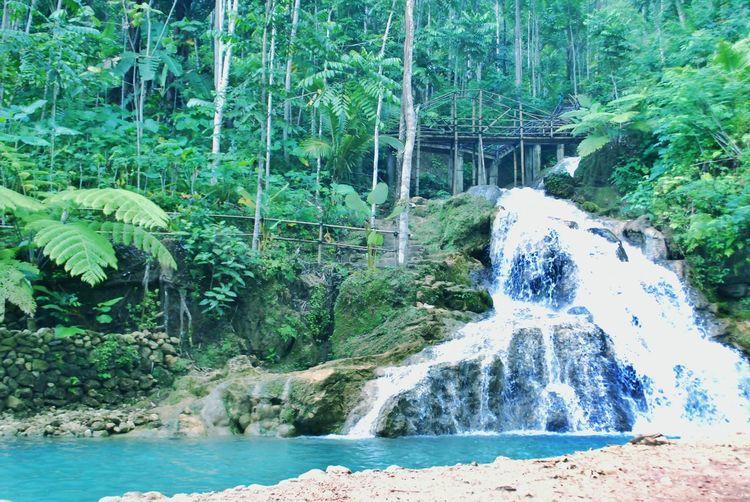 ecowisata taman sungai mudal Waterfall Miniwaterfall IndonesianWaterfall River Naturalswimmingpool Pemandian Hits WOW Bluewater BeautifulRiver Tree Water Forest