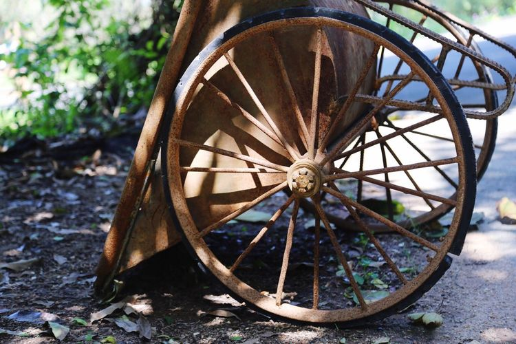 Rusty wheelbarrow on field